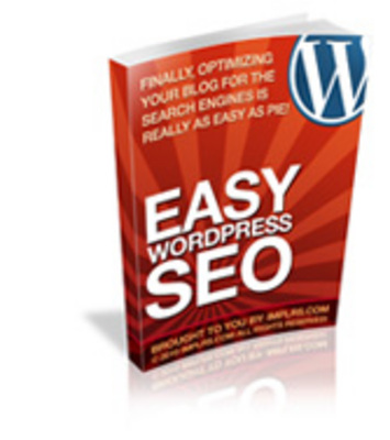 Product picture Easy Wordpress SEO